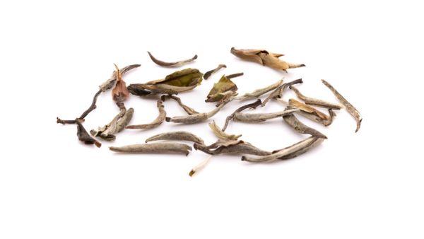 Yin Zhen Silver Needles Weißer Tee