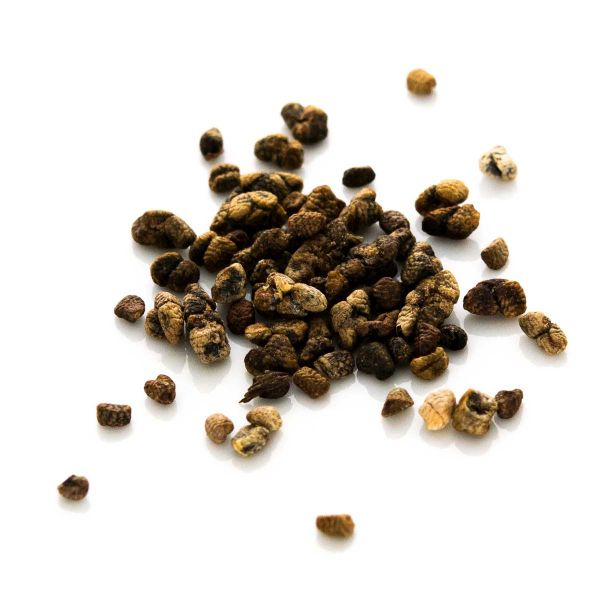 Cardamom Saatkörner (ohne Schale)