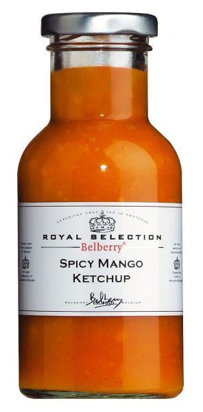 Spicy Mango Ketchup - Tomatenketchup mit Mango