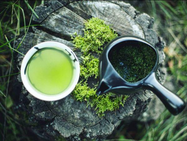 Grüntee Seminar JAPAN - Die Vielfalt der japanischen Tees